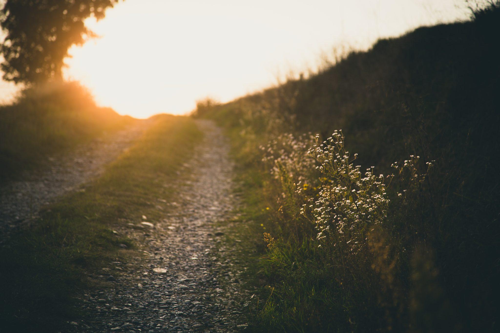 Deinen Weg zur Selbstliebe gehst du jeden Tag
